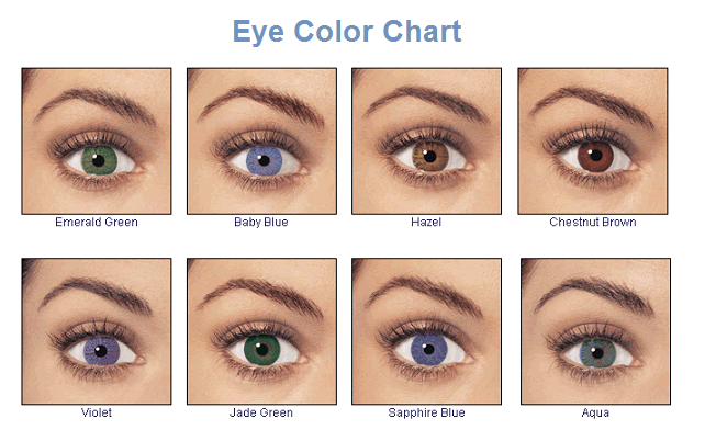 THE BEST EYE SHADOWS FOR YOUR EYE COLOR – IHoot