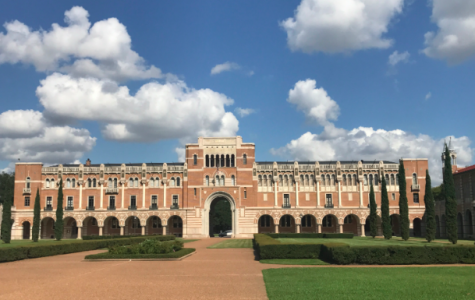RICE UNIVERSITY: A REVIEW