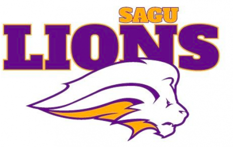 A LOOK INTO SAGU