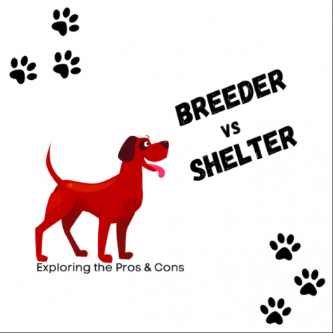 BREEDER VS. SHELTER