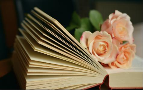 https://images.pexels.com/photos/261782/pexels-photo-261782.jpeg?cs=srgb&dl=book-pages-books-browse-261782.jpg&fm=jpg