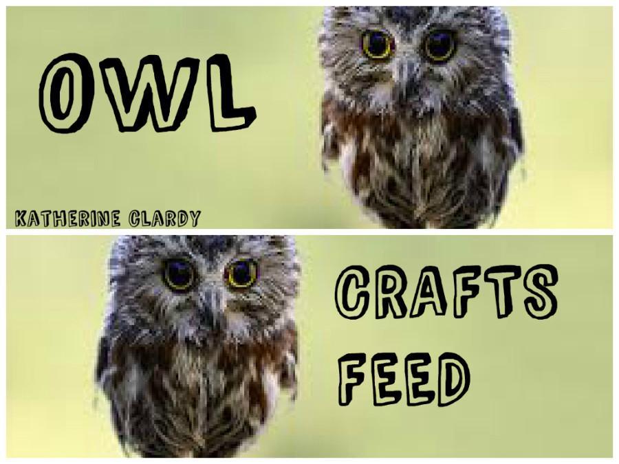 INTRODUCING OWL CRAFTSFEED!