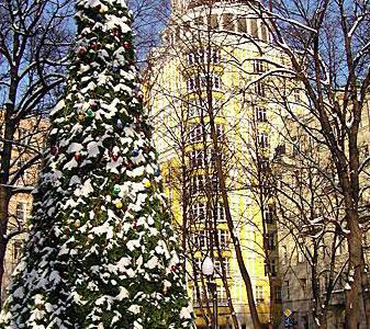 TOP 10 CHRISTMAS TREE LIGHTINGS