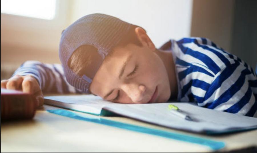 https://www.istockphoto.com/photo/teenage-boy-sleeping-on-the-notebook-gm1130694076-299124731