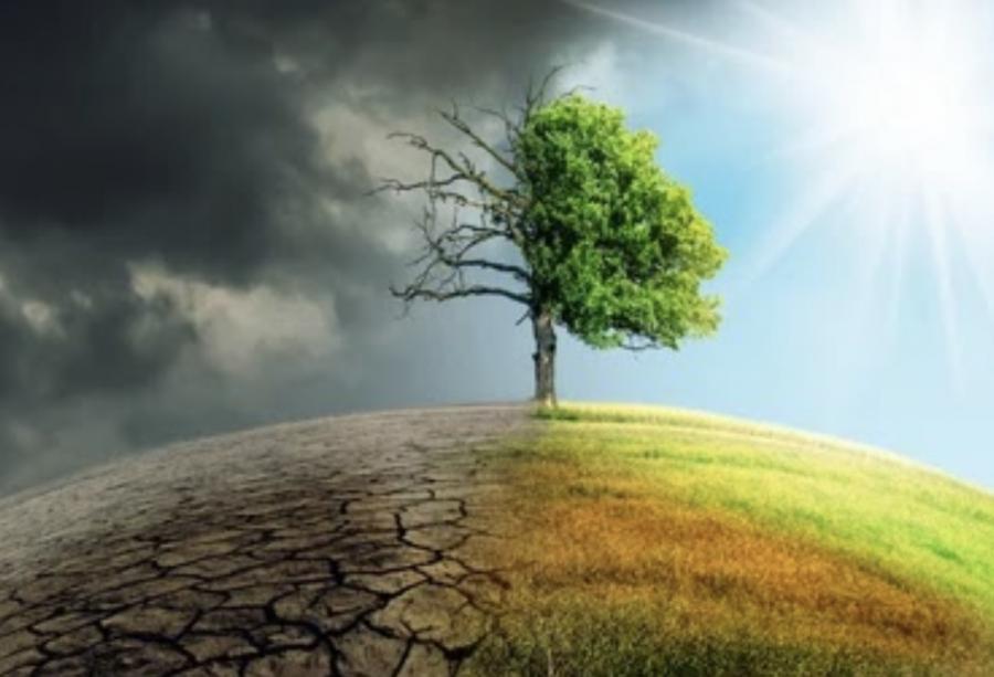 THE GLOBAL WARMING EPIDEMIC