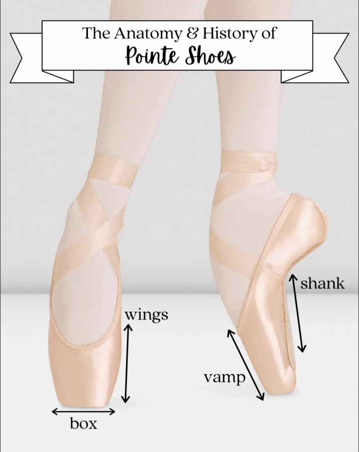 THE ANATOMY & HISTORY OF POINTE SHOES